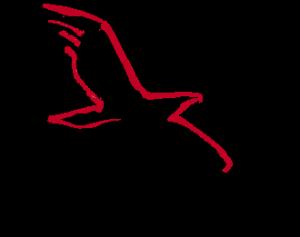 logo_bbg
